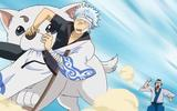 animax_gintama_s1vol1_web_bilder_0006_animaxgintas010014
